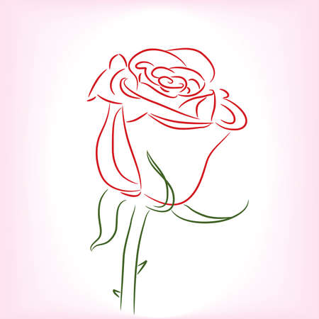 Single Red Rose. Vector illustration Vector