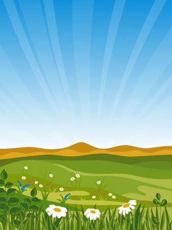 Summer landscape. Vector illustration. Stock Vector - 7164018