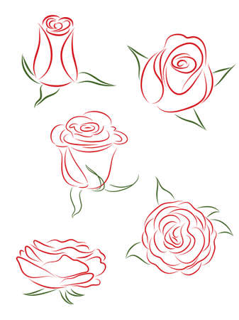 A set of five buds of roses.   illustration. Stock Vector - 7542638