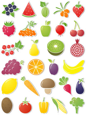 cranberry fruit: The set of Food icons. Vector illustration. Illustration