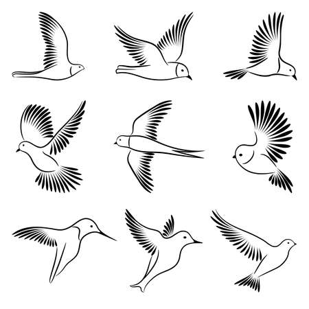 Birds  Stock Vector - 8819073
