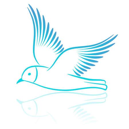 bird drawing: Seagull. Vector illustration.