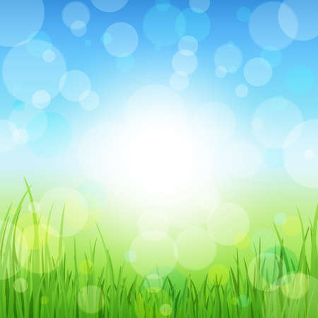 Summer Abstract Background with grass.  Vector
