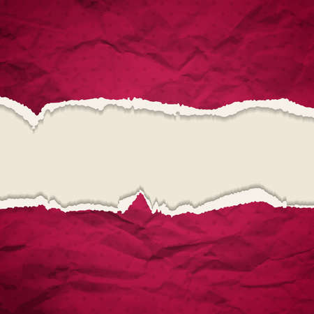 The crumpled  torn paper background . Vector background. Eps10. Vector