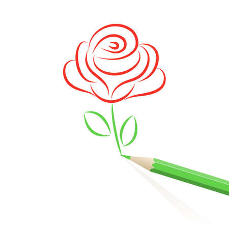 red flower: Rose drawn in pencil.