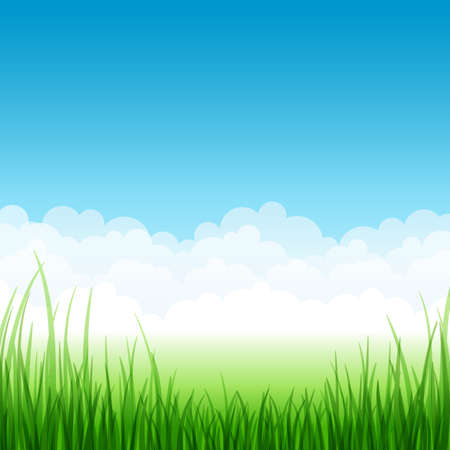 blue sky: Summer landscape with grass and clouds. Vector illustration. Illustration