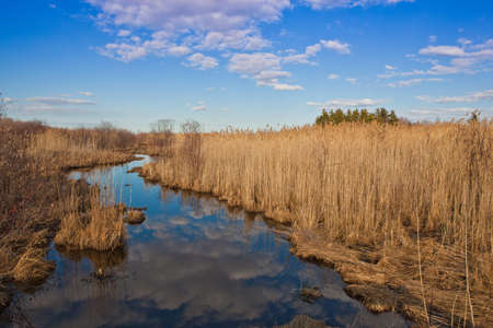 cane creek: Small creek in Lac Saint-Francois National Wildlife area