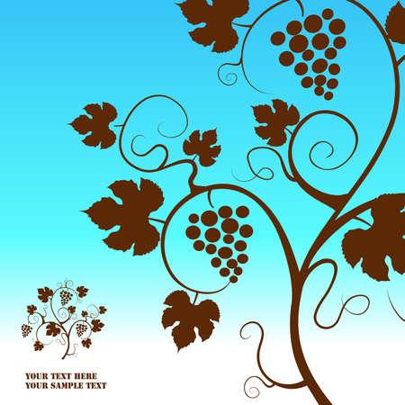 The grape vine background. illustration.