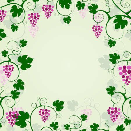 Grape vines background frame  Vector