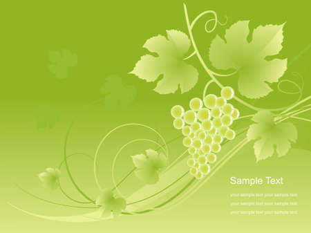The grape background. illustration. Vector