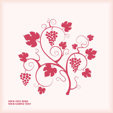 Grape vine.  Stock Vector - 9294443