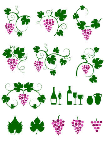 vine leaf: Winery design object silhouettes.  illustration. Illustration