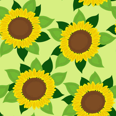 tile able: Seamless sunflowers background on the green. Vector illustration. Illustration