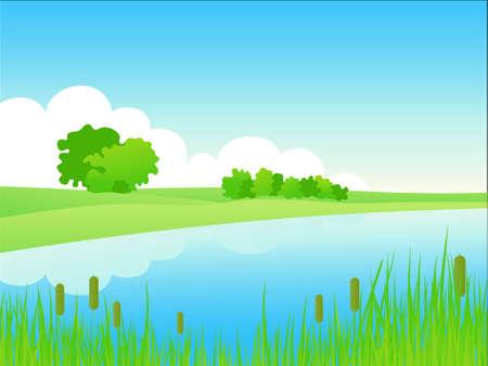 riverside trees: Summer riverside landscape. Vector illustration.