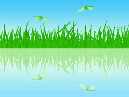 waterside: The beautiful summer meadow waterside