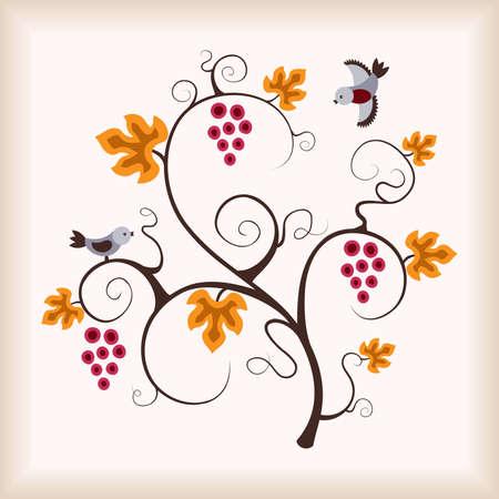 grapevine: Grape vine and birds. Vector illustration. Illustration