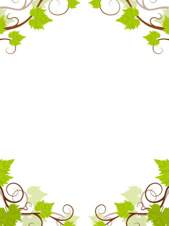 vertical garden: Grape vines frame. Vector illustration. Illustration