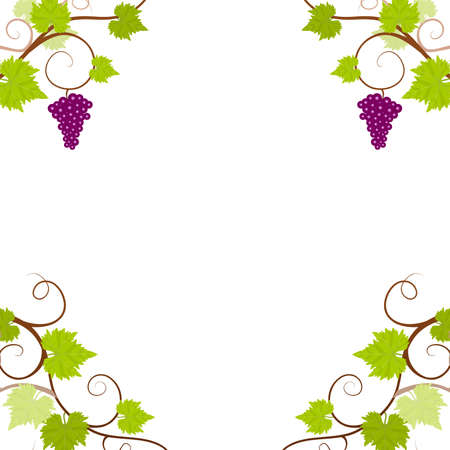 grapevine: Grape vines frame. Vector illustration. Illustration