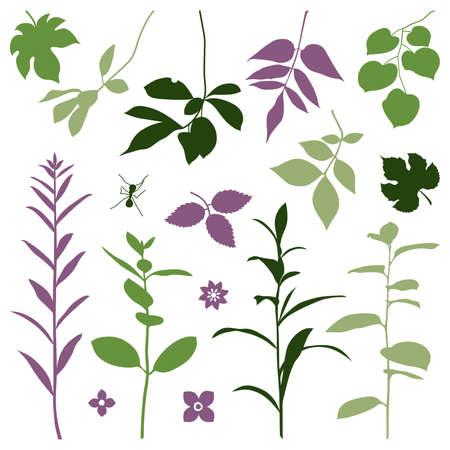 Set of silhouettes of fall plants. Vector illustration. Illustration