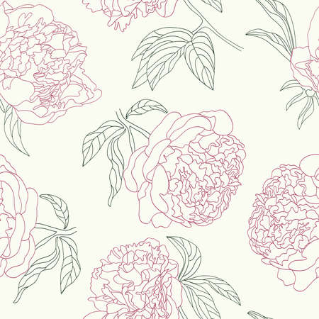 Hand drawing tenderness peony flowers seamless background.  Vector