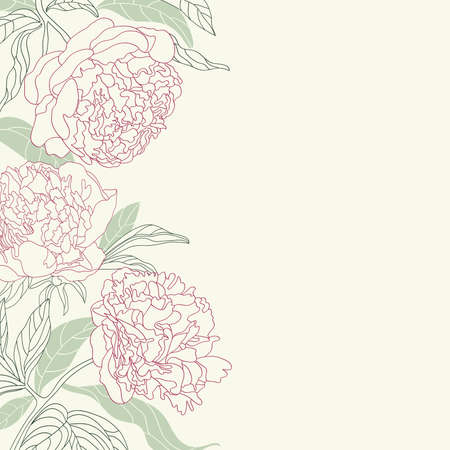 Hand drawing tenderness peony flowers frame. Vector illustration.