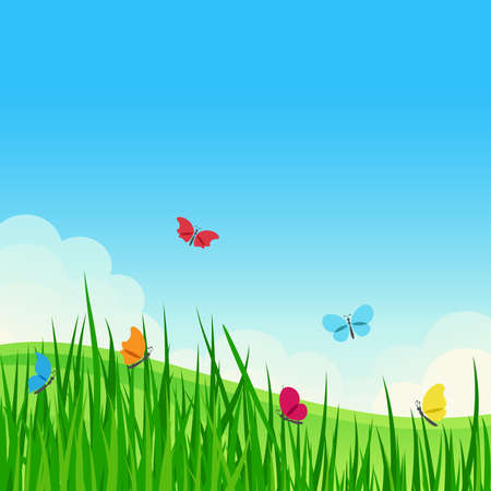 Beautiful summer meadow with colorful butterflies  Vector illustration  Stock Vector - 12773233