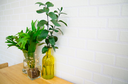 glass bottles with plant on table Imagens