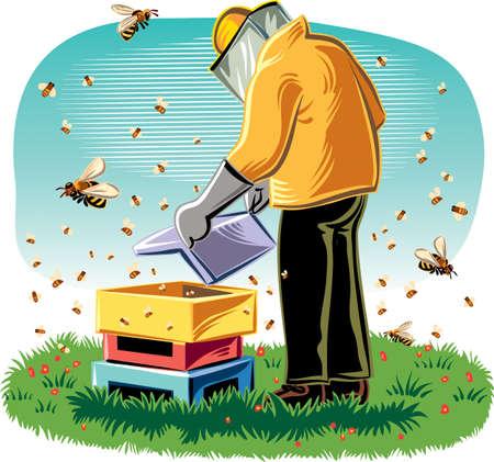 養蜂家は、働き蜂に囲まれた彼のハイブの世話します。 写真素材 - 70956326