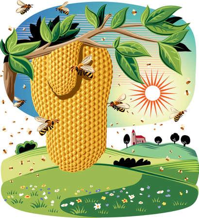 農業景観に働き蜂たちに囲まれて、枝からぶら下がってハニカム。  イラスト・ベクター素材