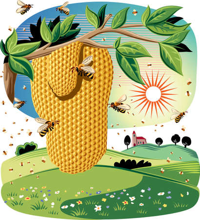 The honeycomb hanging from a branch, surrounded by worker bees in an agricultural landscape. Ilustrace