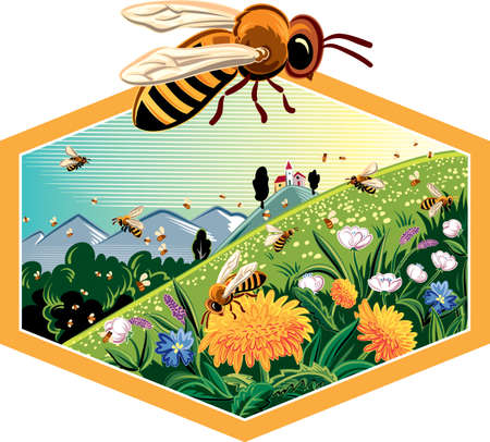Hexagon frame with mountain landscape flowery meadow, worker bees on flowers. Фото со стока - 70956337