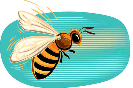 apis: Bee flying in the blue sky Illustration