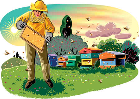 apis: Beekeeper takes care of His hive, surrounded by worker bees.