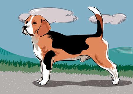 Beagle dog breed, in a landscape Illustration