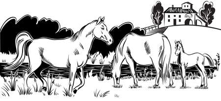 Mare with her foal, and a stallion by the banks of a stream