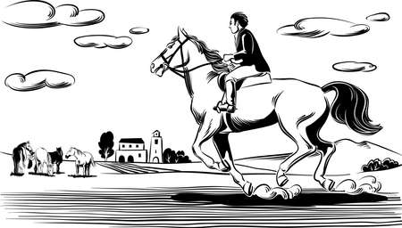 Rider and horse running in the wind. On the bottom of an agricultural landscape.