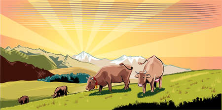 Mountain farm landscape with cows in a meadow, intent to graze the grass.