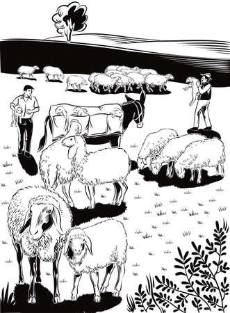 羊、羊飼い、ラバ、羊たちの群れ。  イラスト・ベクター素材