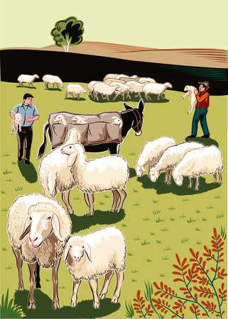 Kudde Schapen, Herders, Molen en Lammeren.