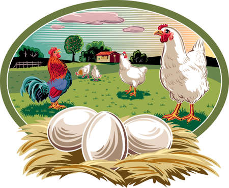 Oval frame with hens and nest with eggs. Illustration