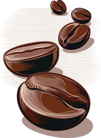 Coffee beans illustration. Çizim