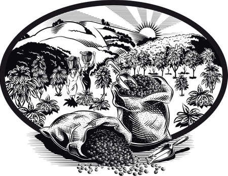 Oval frame with bags of coffee and plantation. Ilustração