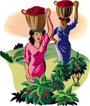 Girls with baskets of coffee.