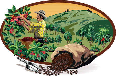 Oval frame, with bags of coffee and coffee bin on a plantation.