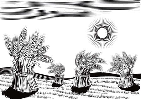 잘 익은 밀의 도르래와 시골 풍경 일러스트