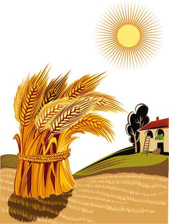 Rural landscape with sheaf of ripe wheat. Illustration