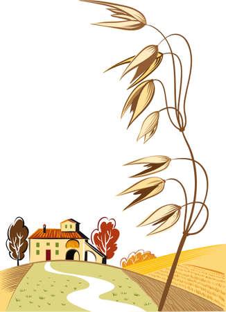 Rural landscape with ripe oats ear.