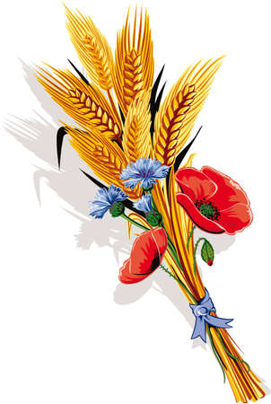 Bunch of ears of wheat and poppy flowers and cornflower.