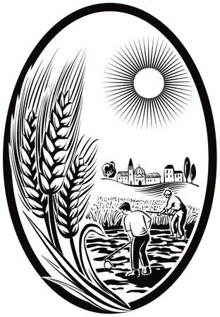 Oval with ears of wheat and landscape with cultivated fields.