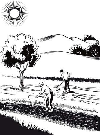 2 つの農家で栽培、農業景観
